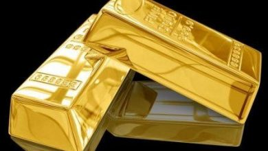 Photo of 14 kg gold seized at Hazrat Shahjalal International Airport.